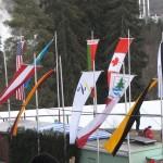WCS 2007 Die Fahnen der teilnehmenden Nationen
